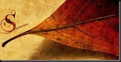 September Autumn Leaf