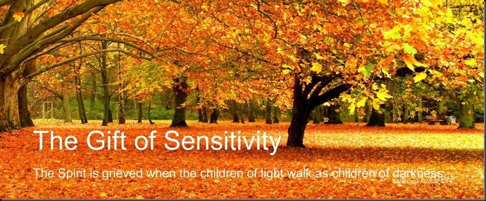 Biblical Inspiration 1 ~ Series; WHEN THE SPIRIT HAS HIS WAY ~ Recapturing the Wonder of God Within Us ~ The Gift of Sensitivity ~ The Moody Church. Image; Fall Autumn Foliage (1)